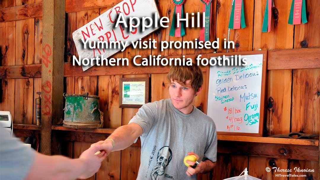 Apple Hill: Yummy visit promised in Northern California foothills