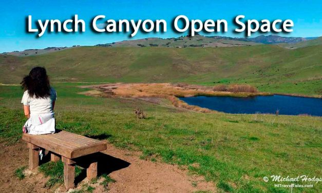 Lynch Canyon Open Space escape near San Francisco