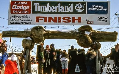 An Iditarod adventure – In March, Nome Alaska goes to the dogs