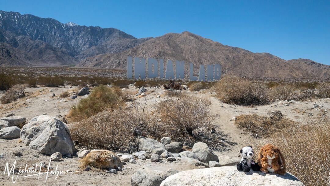 Indian Land Desert X Sophie Flopsie
