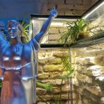 Discover the secret Ostannya Barykada restaurant in Kyiv