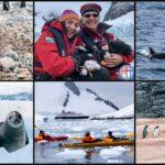 Best Antarctica photos – Our favorite Antarctica Intagram photos