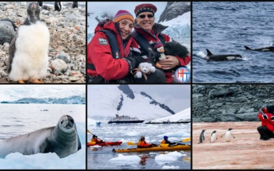 Best Antarctica photos – Our favorite Antarctica Intagram photos