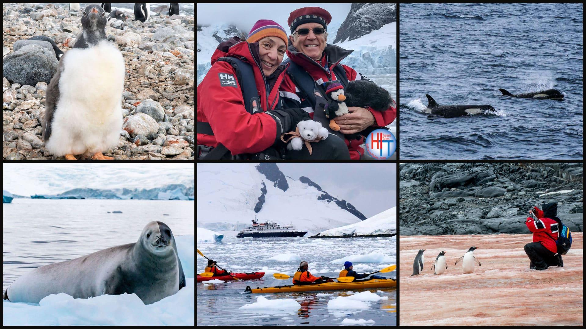Our Favorite Antarctica Instagram Photos