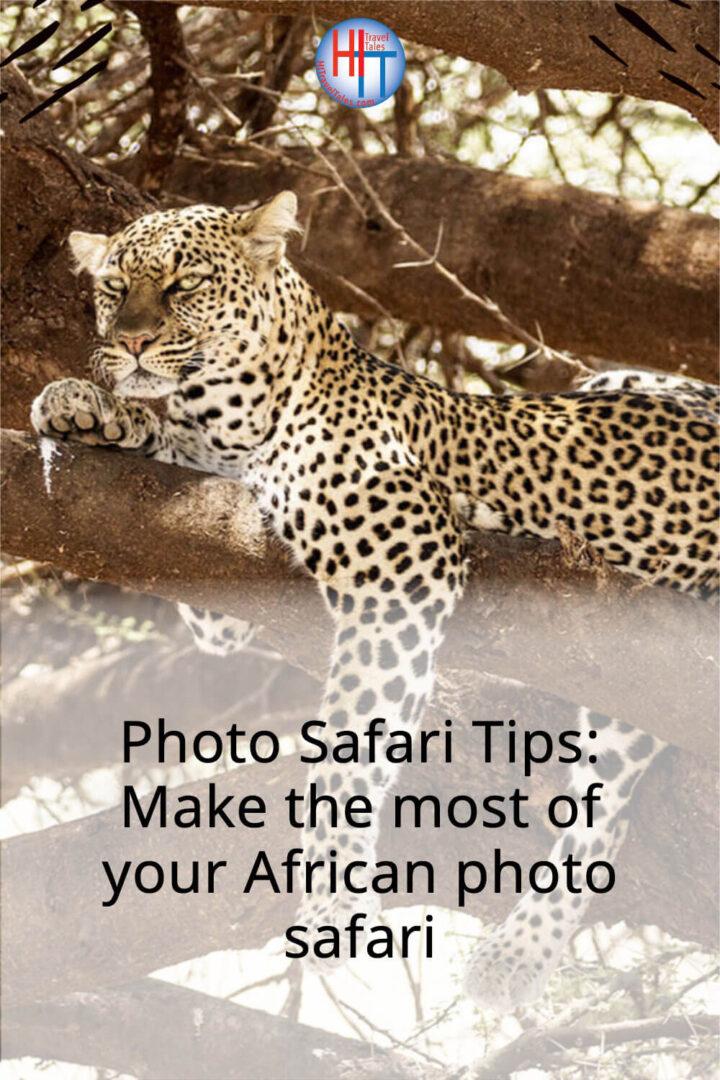 Photo Safari Tips Make The Most Of Your African Photo Safari