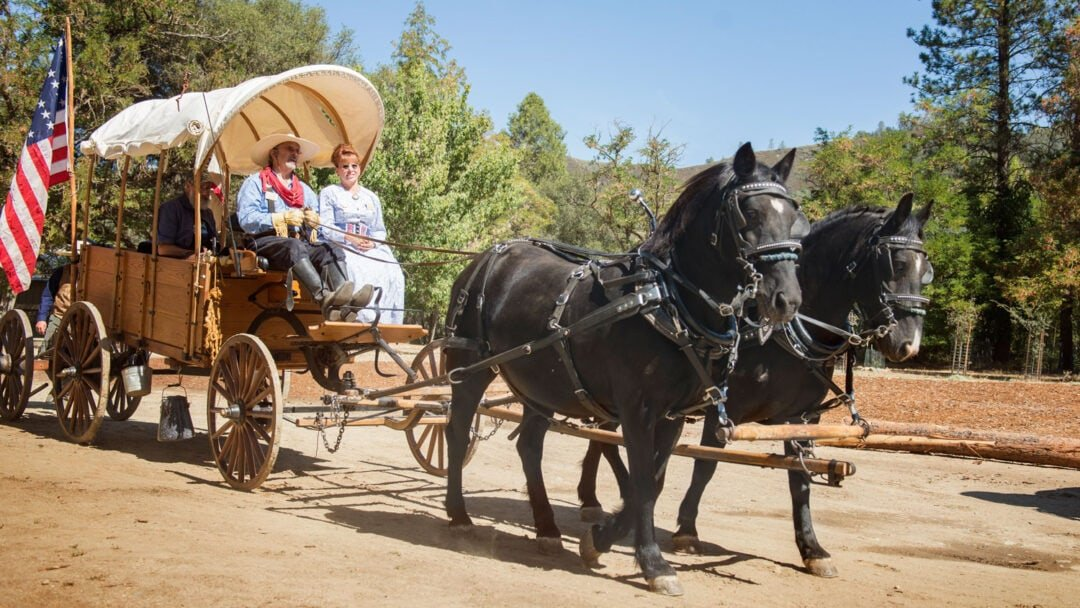 Placerville Hangtown Days Gold Rush