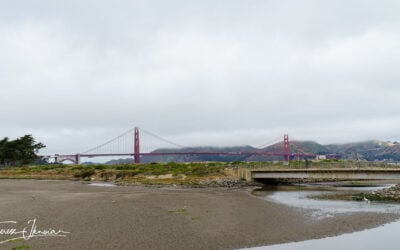 What to do in Presidio San Francisco: adventure, views, history, dining
