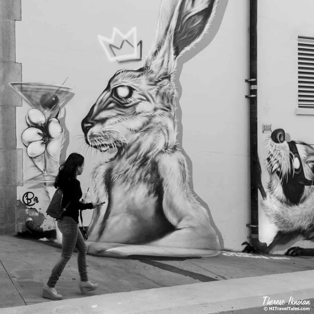 Sacto Street Art in Sacramento by Brett Crawford