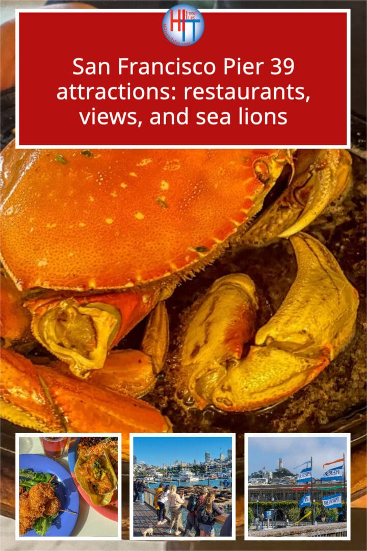 San Francisco Pier 39 Attractions Restaurants Views And Sea Lions