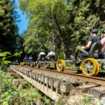 California railbiking: pedaling Skunk Train railbikes in Mendocino