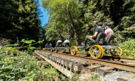 California railbiking: pedaling Skunk Train railbikes in Mendocino