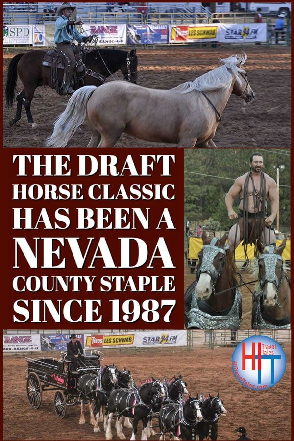 The Draft Horse Classic Has Been A Nevada County Staple Since 1987