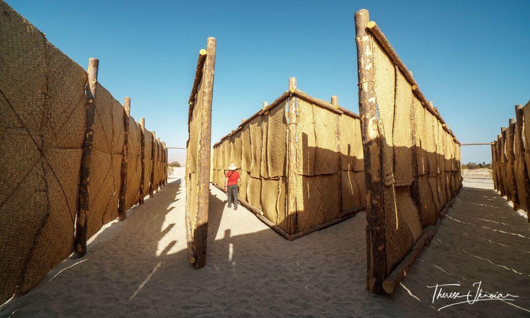 The Passenger Sarabia Desert X Outdoor Art