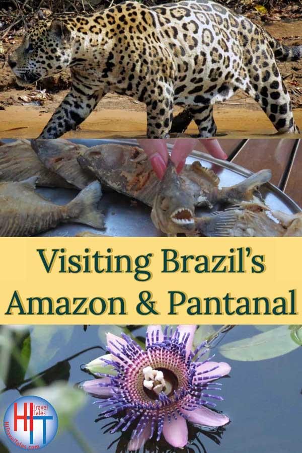 Visiting Brazil Amazon