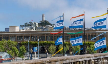 San Francisco Pier 39 attractions: restaurants, views, and sea lions