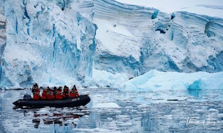 Discovering Antarctic silence in Paradise Bay Antarctica
