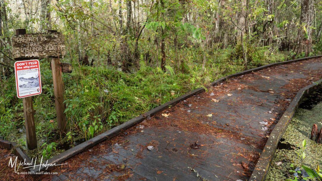 Palmetto Trail Barataria Preserve Jefferson Parish
