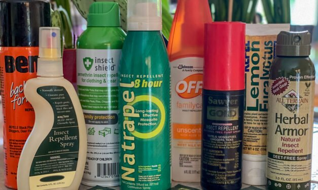 Choosing Bug Repellents: Which is the best insect repellent for travel