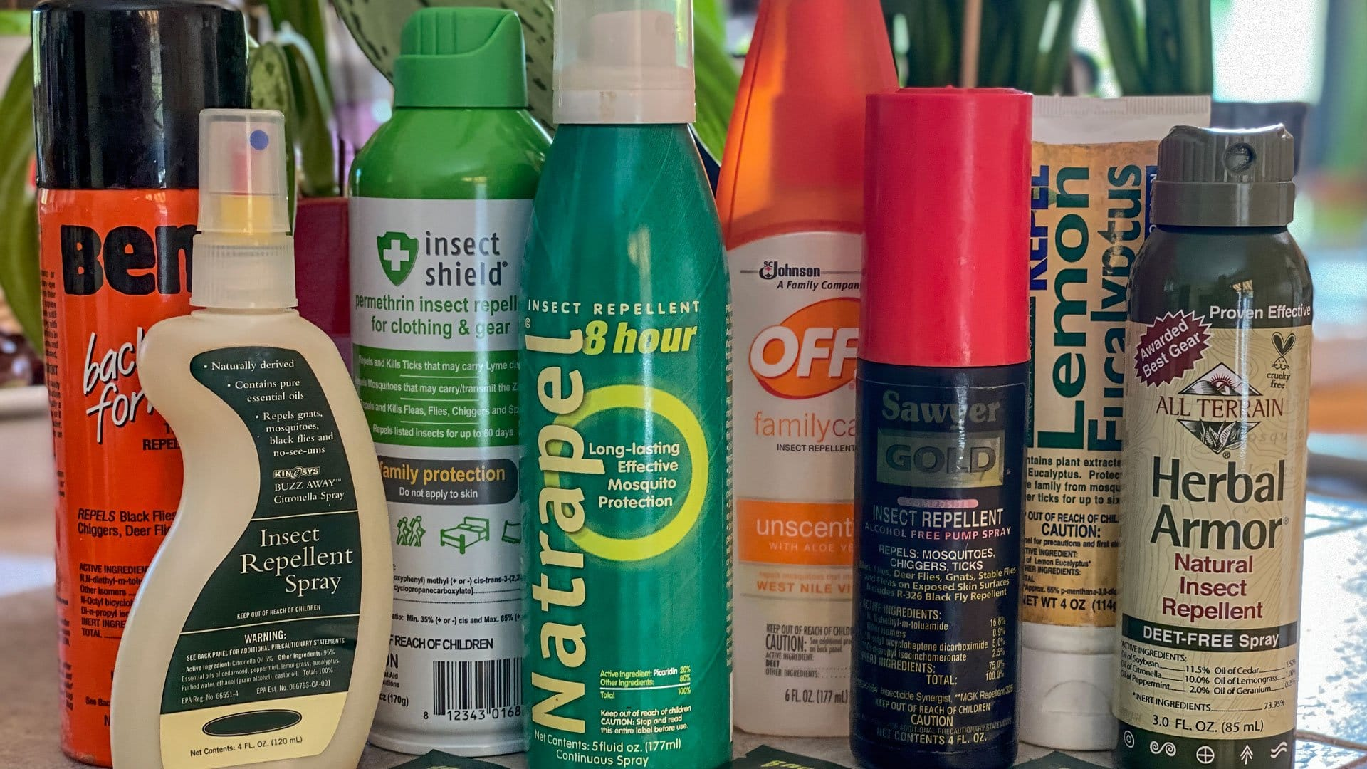 Best Insect Repellent Choosing Bug Spray