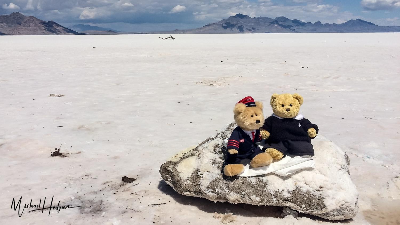 Traveling Stuffed Animals - Dieter Bear In The Salt Flats
