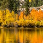 Tips for eye-catching fall color photography anywhere you travel