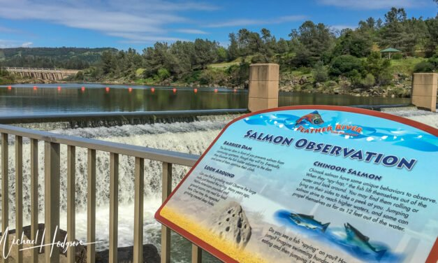 California road trip visit to Feather River Fish Hatchery & Oroville Dam
