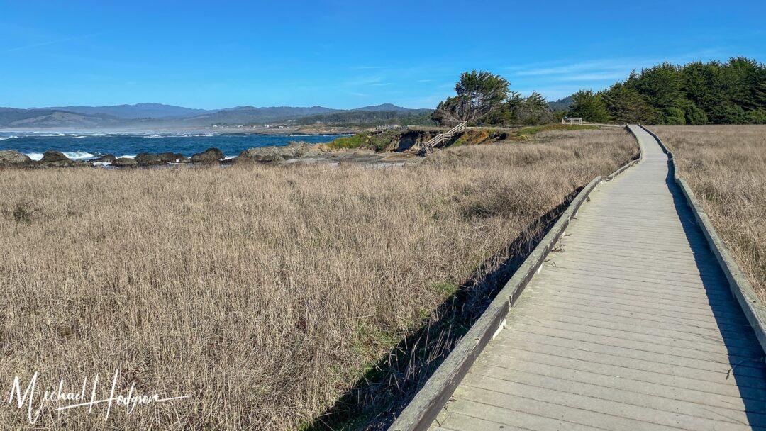 Boardwalk MacKerricher State Park Mendocino