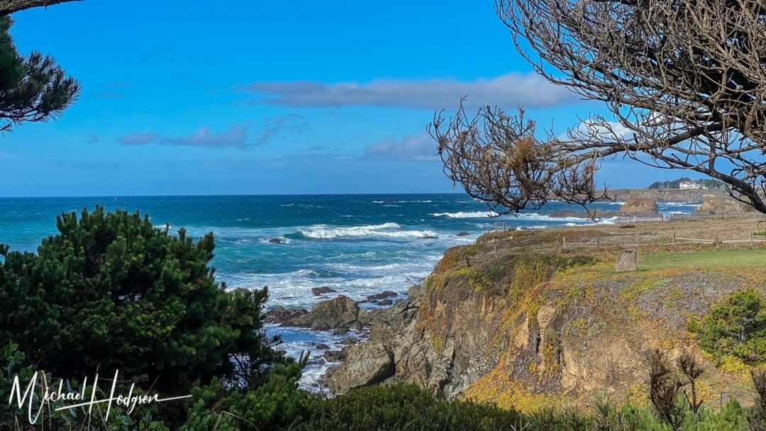 Mendocino Coast Botanical Gardens Coastal Bluffs