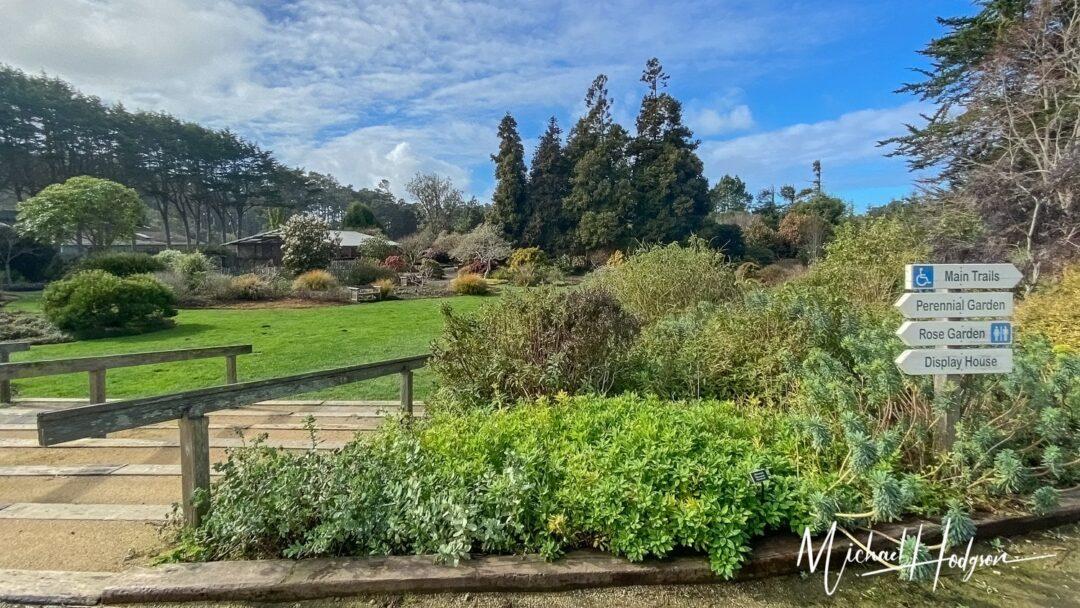 Mendocino Coast Botanical Gardens Lawn Area