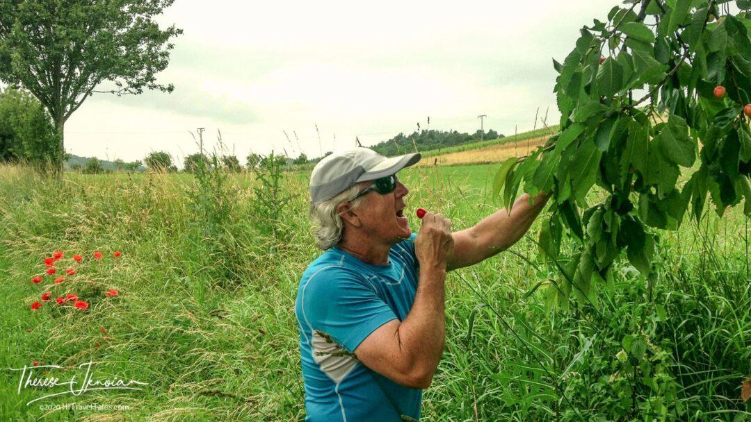 Michael Hodgson Eating Cherries On Hike To Qeudlinburg Watch Tow
