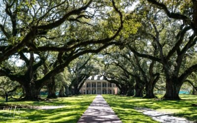 Explore New Orleans Plantation Country along the Great River Road