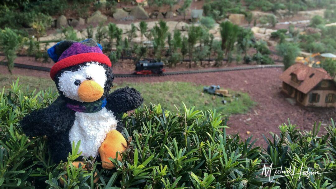 Pingo In Disney World