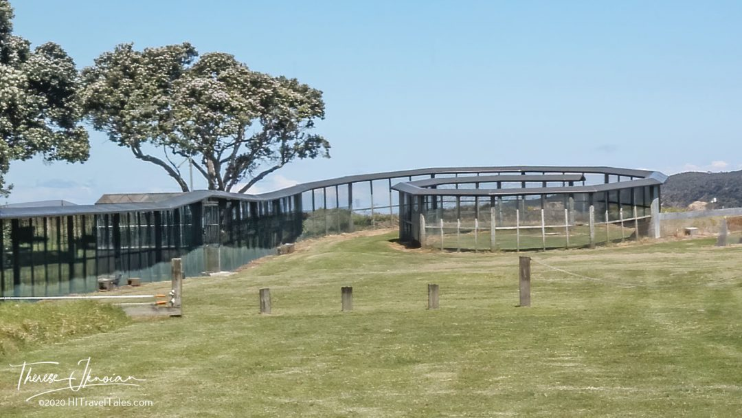 The Special Fence At Tawharanui Regional Park