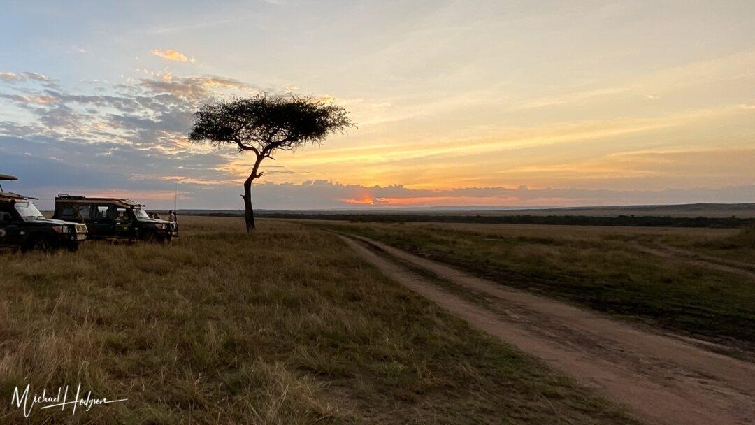 Sunset Acacia Tree Land Cruisers Maasai Mara