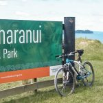 Great walks and Kiwi birds in Tawharanui Regional Park