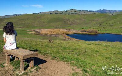 Lynch Canyon Open Space escape near San Francisco
