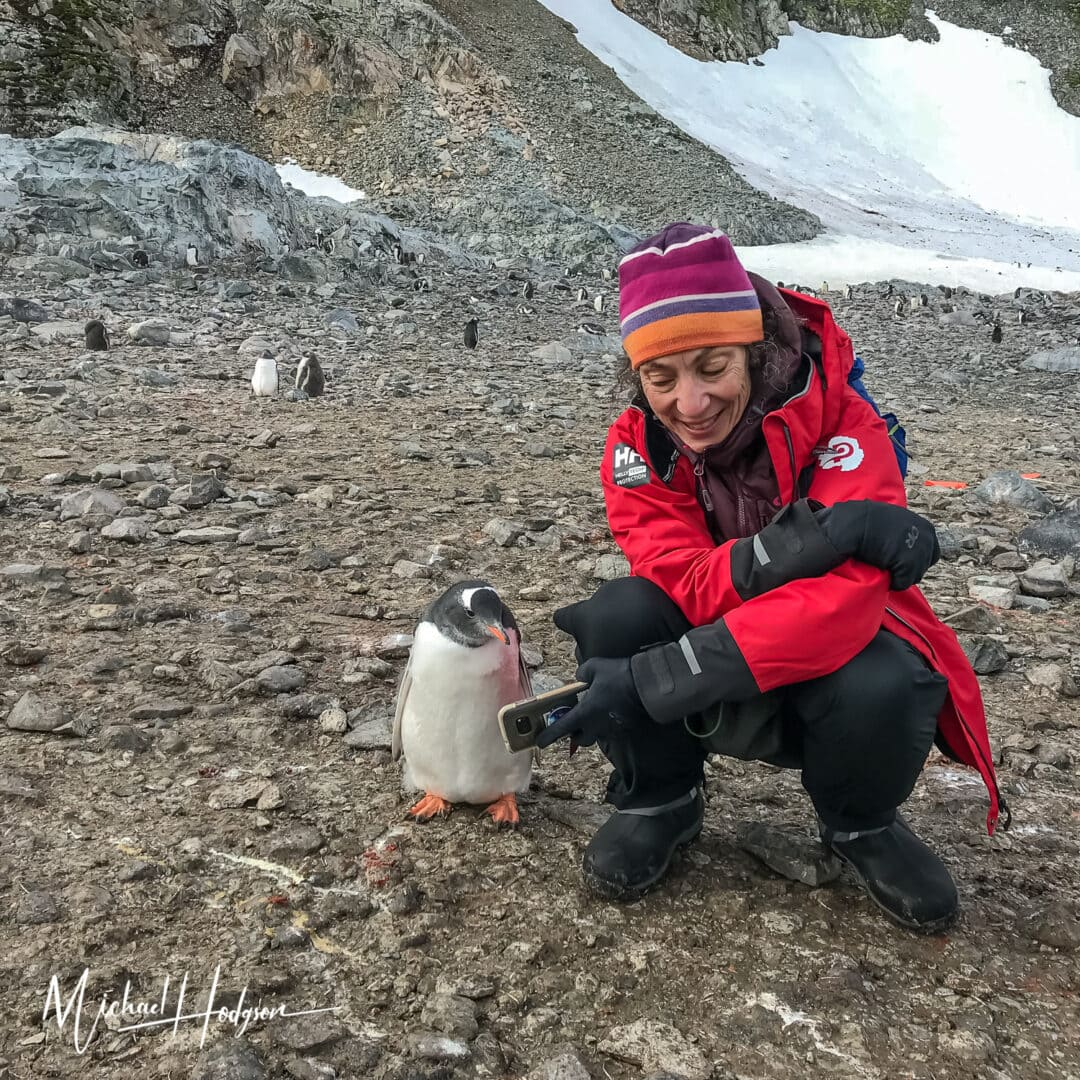 Therese Iknoian Penguin Selfie Antarctica