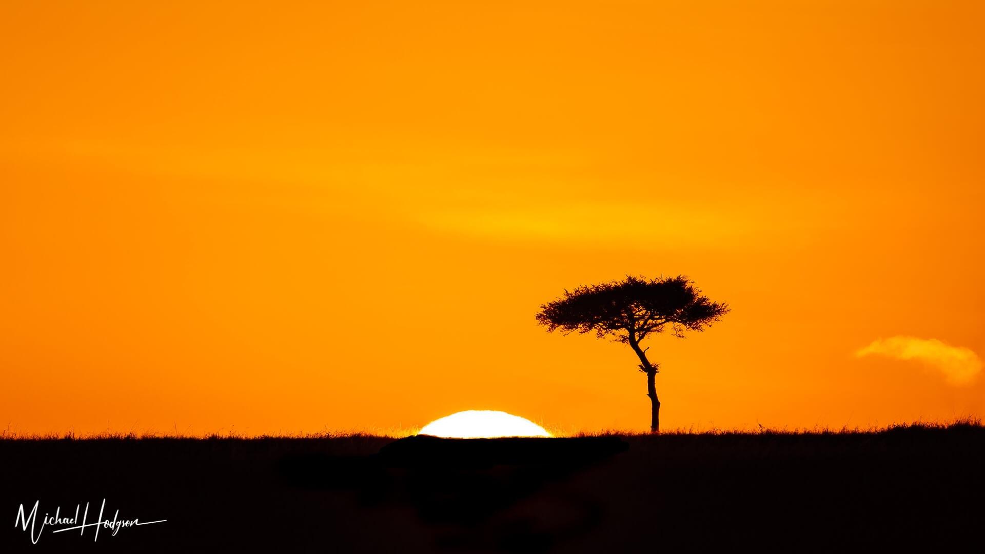 Why I Love Kenya Sunrise Acacia Maasai Mara Cover